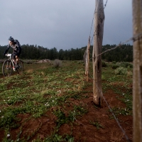 Mike Sowers crosses the Bumpy Field trail
